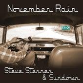 November Rain von Steve Sterner
