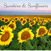 Sunshine & Sunflowers by Nature Sounds (1)
