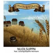Nudlsuppn by Erwin