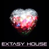 Extasy House von Various Artists