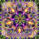 Healing Lights 6 by DJane Gaby van Various