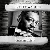 Greatest Hits by Little Walter