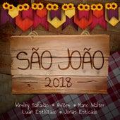 São João 2018 de Various Artists