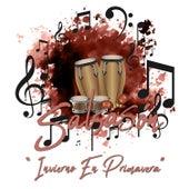 Salsasón: Invierno en Primavera de Various Artists