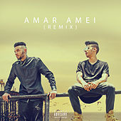 Amar Amei (Remix) de Trap-Flow