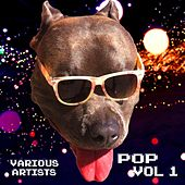 Pop, Vol. 1 di Various Artists