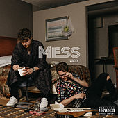 Mess by Vibes