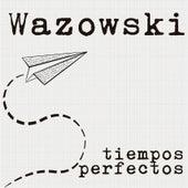 Tiempos Perfectos by Wazowski