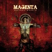 Metamorphosis by Magenta