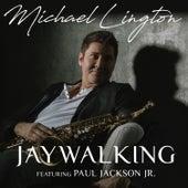 Jaywalking by Michael Lington