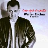 Como Dejar de Amarte de Walter Encina