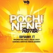 Pochi Nene (Remix) de Rayvanny
