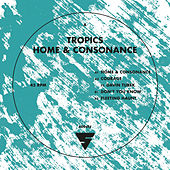 Home and Consonance by Tropics