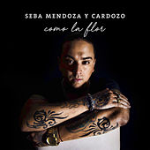 Como la Flor de Sebastian Mendoza