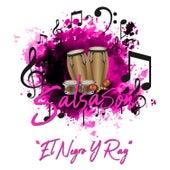 Salsasón: El Negro y Ray de Various Artists