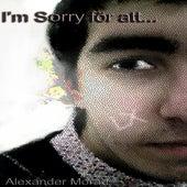 I'm Sorry för att... von LX