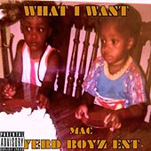 What I Want by Mac