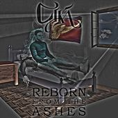 Reborn from the Ashes de Various Artists