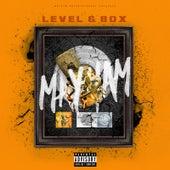 Mayham by Level