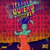Te Quiero Ver (feat. Beto Perez) de Locos Por Juana