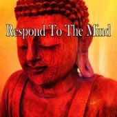 Respond To The Mind von Entspannungsmusik