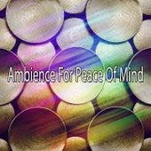 Ambience For Peace Of Mind de Meditación Música Ambiente
