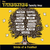 Family Tree: Birds Of A Feather de Various Artists