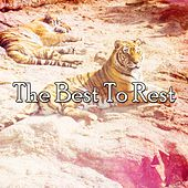 The Best To Rest by Deep Sleep Music Academy