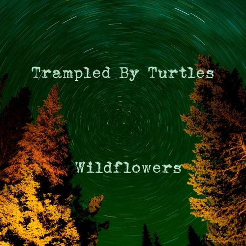 Wildflowers de Trampled by Turtles