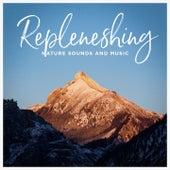 Repleneshing nature sounds and music de Various Artists