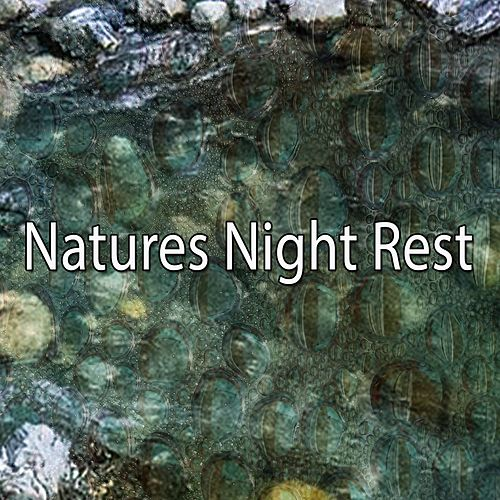 Natures Night Rest de Lullaby Land