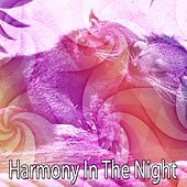 Harmony In The Night by Lullaby Land