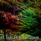 A Night Of Spa Treatment de Best Relaxing SPA Music