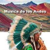 Música de los Andes by Sabroso