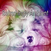 Refreshingly Ambient by S.P.A