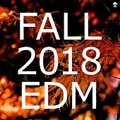 Fall 2018 EDM by Various Artists