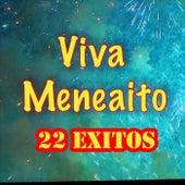 Viva Meneaito: 22 Exitos by Various Artists