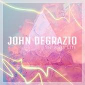 The Dream Life by John DeGrazio