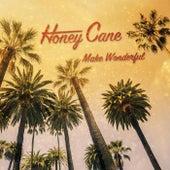 Make Wonderful by Honey Cane