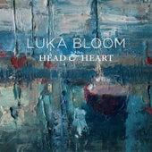 Head & Heart de Luka Bloom