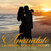 Amandote by La Original Banda El Limón