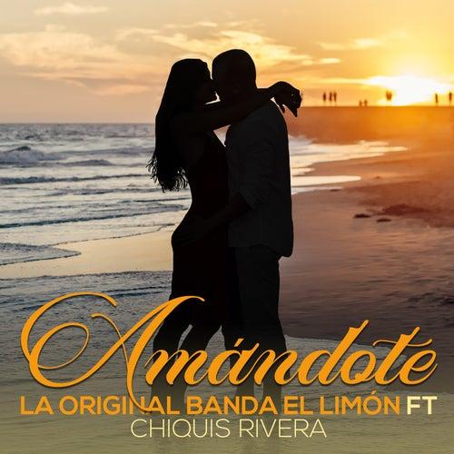 Amandote de La Original Banda El Limón