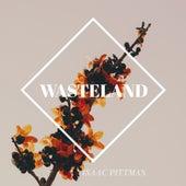 Wasteland de Isaac