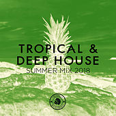 Tropical & Deep House: Summer Mix 2018 - EP by Various Artists