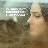 Calming Study Music: Music for the Study Process by Various Artists