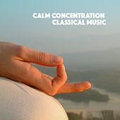 Calm Concentration Classical Music by Various Artists