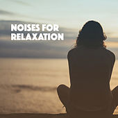Noises For Relaxation by Various Artists