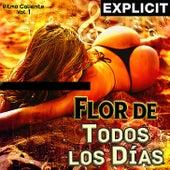 Flor de Todos los días by Various Artists