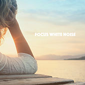 Focus White Noise de Various Artists
