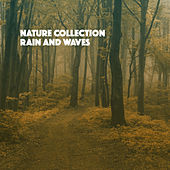 Nature Collection: Rain And Waves de Various Artists